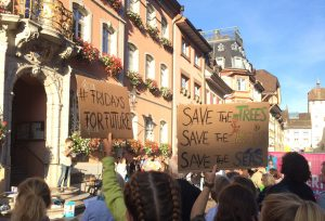 Menschen an einer Klimademo. Plakate mit den Worten Fridays for Future und Save the trees, save the bees, save the seas.