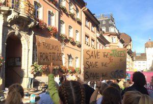 Menschen an einer Klimademo. Plakate mit den Worten Fridays for Future und Save the trees, save the bees, save the seas.